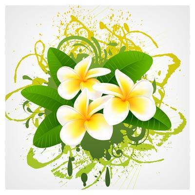 دانلود وکتور گل یاس با دو فرمت eps و ai  لایه باز (flowers bloom free vector)