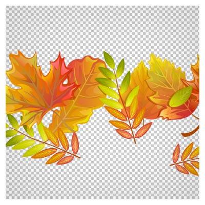 دانلود فایل دوربری شده برگهای پاییزی با فرمت png