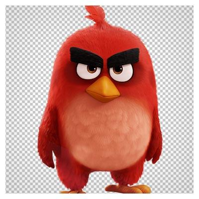 دانلود فایل ترانسپرنت و دوربری شده پرنده خشمگین( angry bird ) قرمز با پسوند png