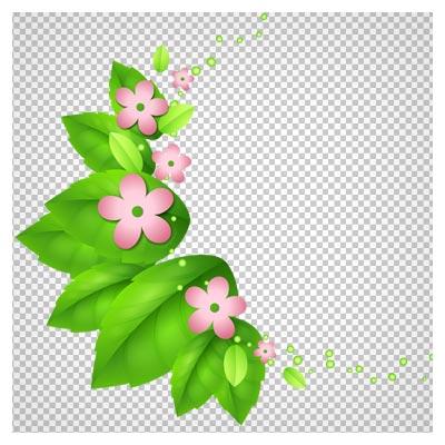 تصویر دوربری شده برگ و گل پنج برگ با فرمت png با کیفیت بالا