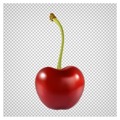 دانلود تصویر دوربری شده و فاقد بکگرند آلبالو به صورت فایل png با کیفیت بالا