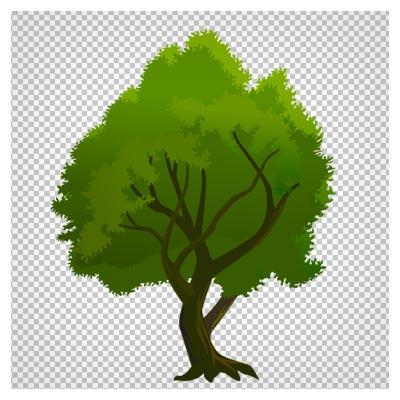 دانلود فایل ترانسپرنت و بدون پس زمینه درخت پر شاخ و برگ سبز با فرمت png