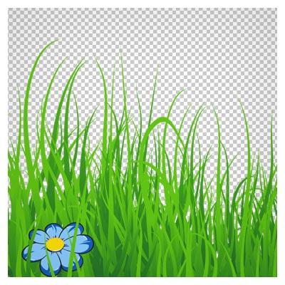 دانلود تصویر دوربری شده و فاقد بکگرند چمن های کارتونی بلند به صورت فایل png با کیفیت بالا
