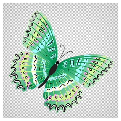 دانلود شاپرک (پروانه) کارتونی با رنگ سبز بصورت دوربری شده و بدون پس زمینه
