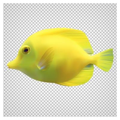 دانلود فایل ترانسپرنت ماهی آب شور زرد با فرمت png (بدون پس زمینه)
