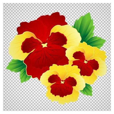 دانلود گل بنفشه زرد و قرمز دوربری شده و بدون پس زمینه با فرمت PNG