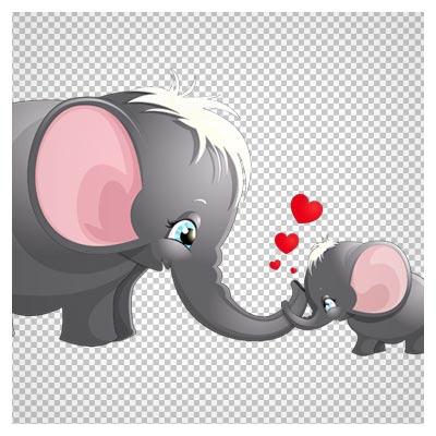 دانلود مادر و بچه فیل چشم آبی (مهر مادری در حیوانات) بصورت فایل دوربری شده و بدون بکگرند