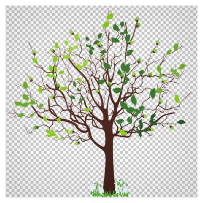 دانلود تصویر درخت کم برگ بهاری کارتونی بصورت فایل فاقد بکگرند و دوربری شده