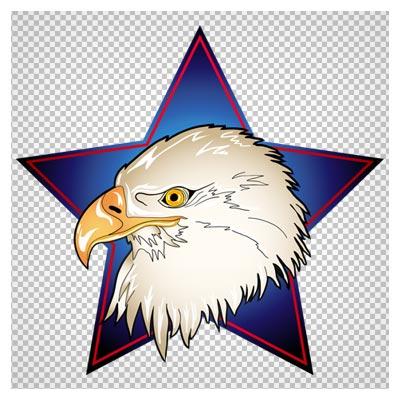 دانلود فایل دوربری شده سر عقاب در ستاره آبی با فرمت png