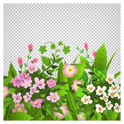 دانلود دسته گیاه ها و گل صورتی دوربری شده و بدون پس زمینه