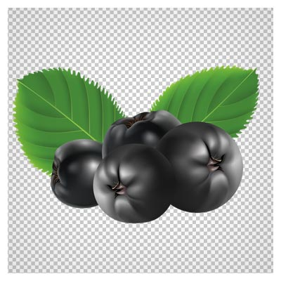 دانلود فایل png میوه بلوبری دوربری شده و فاقد بکگرند