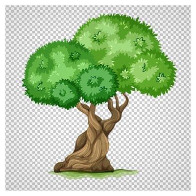 دانلود درخت قدیمی تنومند دوربری شده و بدون پس  زمینه با فرمت png