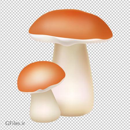 دانلود قارچهای بلند سر نارنجی به صورت دوربری شده و فاقد بکگرند