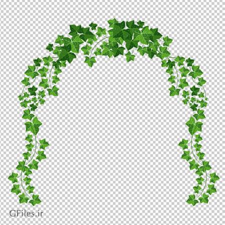 دانلود فریم برگهای سبز پیچک با فرمت png و بدون پس زمینه