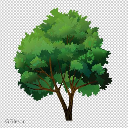 دانلود درخت بید سبز پر برگ بصورت فایل بدون بکگرند و دوربری شده