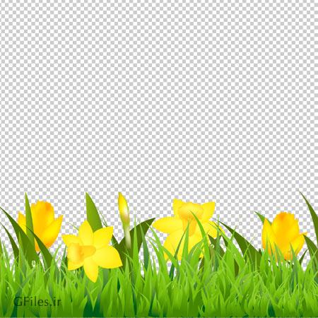 دانلود دشت گل های زنبق کارتونی بصورت فایل با پسوند png و دوربری شده