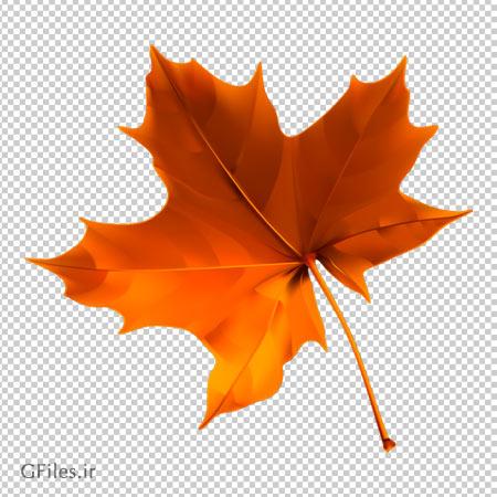 دانلود برگ خشک شده درخت چنار بصورت فایل بدون بکگرند با پسوند png