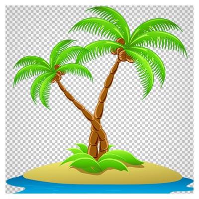 تصویر کارتونی دو درخت نارگیل (نخل) در جزیره کوچک بدون پس زمینه با فرمت png