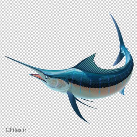 دانلود فایل دوربری شده نیزه ماهی آبی با فرمت png و فاقد بکگرند