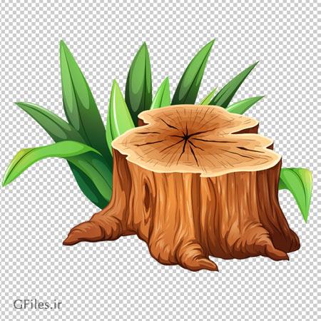 فایل گیاه و تنه درخت بریده شده با فرمت png و فاقد بکگرند