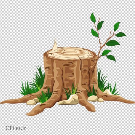 جوانه درخت بریده شده بدون پس زمینه با فرمت png