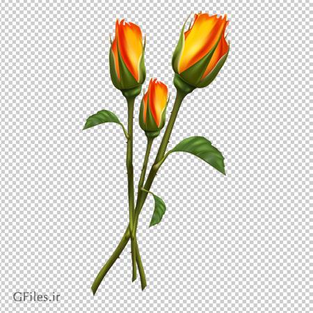 دانلود تصویر فایل png رزهای زرد آتشی دوربری شده