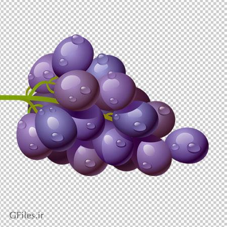 انگور مشکی شسته شده ، دانلود بصورت فایل دوربری شده بدون بکگرند