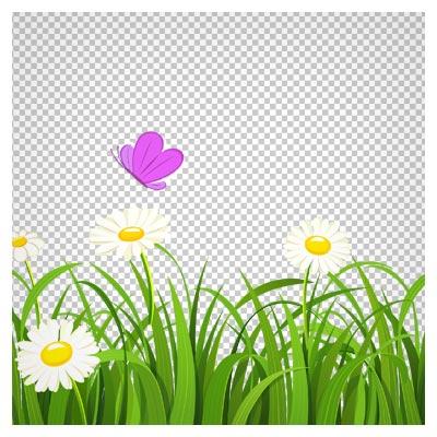 تصویر بوته زار با گل های سفید و پروانه ، دانلود بصورت فایل با پسوند png و بدون پس زمینه