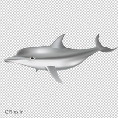 دانلود فایل دوربری شده با فرمت png دلفین خاکستری