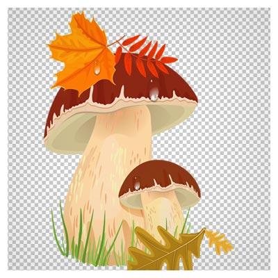 تصویر دو قارچ و برگ های پاییزی بدون پس زمینه و فرمت png