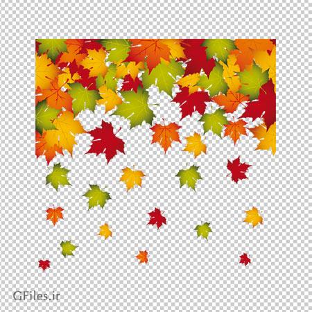 دانلود تصویر برگ های رنگارنگ درخت چنار بدون پس زمینه