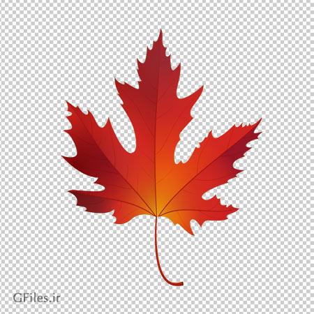 تصویر بدون پس زمینه تک برگ قرمز چنار با فرمت پی ان جی