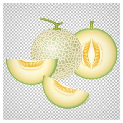 تصویر میوه طالبی با فرمت پی ان جی و به صورت فایل ترانسپرنت