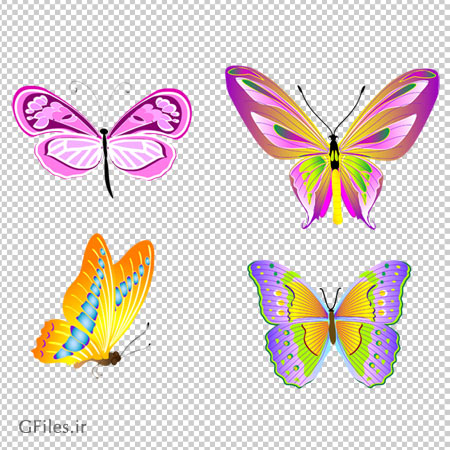 کلیپ آرت پروانه های رنگارنگ بدون پس زمینه و فاقد بکگرند