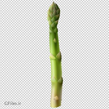 تصویر دوربری شده و فاقد بکگرند ساق مارچوبه سبز با فرمت پی ان جی