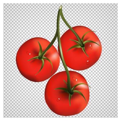 دانلود فایل ترانسپرنت و فاقد بکگرند گوجه فرنگی های تازه با پسوند پی ان جی