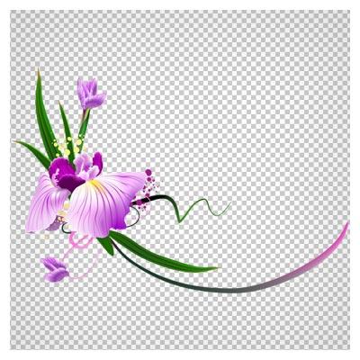 تصویر بدون پس زمینه طرح گل های بنفش با فرمت png
