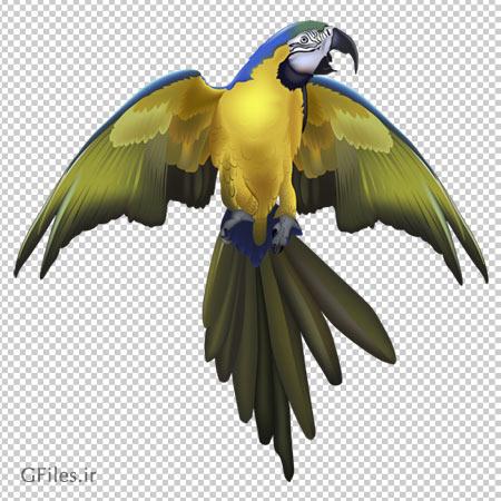 دانلود تصویر طوطی آبی در حال پرواز با فرمت پی ان جی