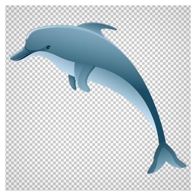 دانلود فایل کلیپ آرت دلفین دوربری شده با فرمت پی ان جی