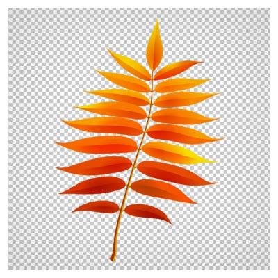 فایل کلیپ آرت ساقه پر برگ پاییزی با پسوند png و دوربری شده
