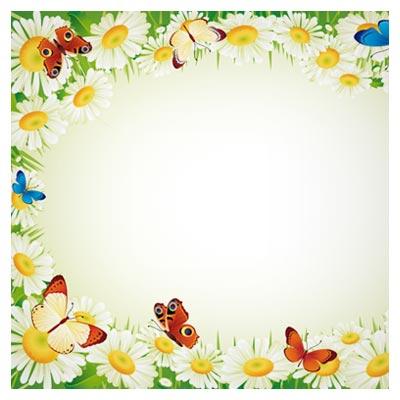 دریافت فایل برداری فریم با طرح گلهای بابونه سفید