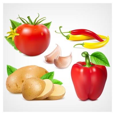 دانلود وکتور مجموعه صیفی جات فلفل دلمه ای ، فلفل قرمز ، سیب زمینی و گوجه فرنگی