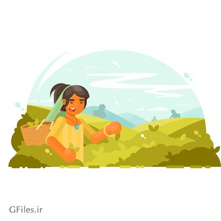 وکتور کارتونی مرد چایچین (مردی در حال چیدن برگ های درخت چای)