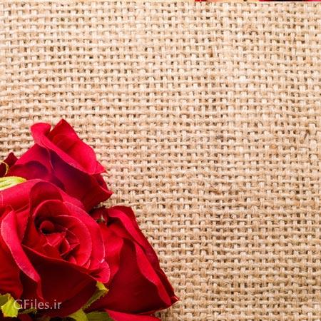 عکس رمانیتک و با کیفیت از گل های رز در پس زمینه با بافت گونی و حصیر
