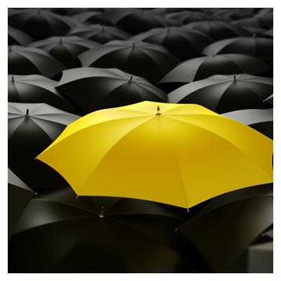 عکس یک چتر زرد رنگ در میان تعدادی چتر مشکی رنگ با فرمت jpg