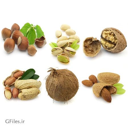 عکس از تعدادی خوراکی قهوه ای در کنار هم، از جمله نارگیل و آجیل