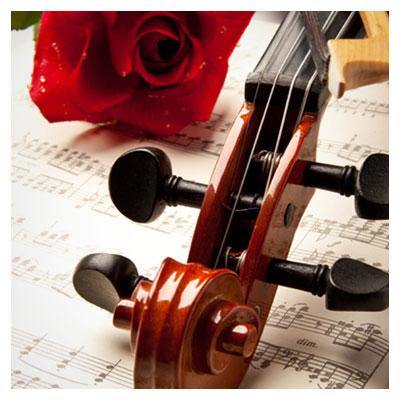 عکس شاعرانه نوت موسیقی و یک گل رز قرمز در کنار ویالون