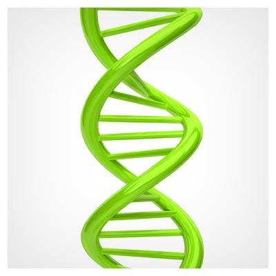 عکس کروموزوم و DNA بدن انسان به رنگ سبز با فرمت JPG