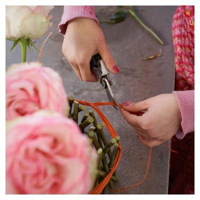 دانلود عکس دسته گل رز صورتی و چیدن نخ متصل شده به آن برای بسته شدن