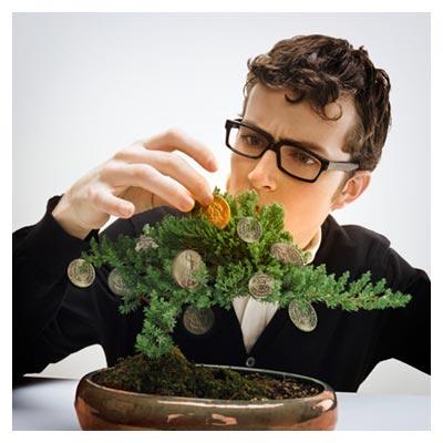 دانلود رایگان عکس درختچه با میوه ی سکه های نقره و یک سکه طلا در دست مرد جوان
